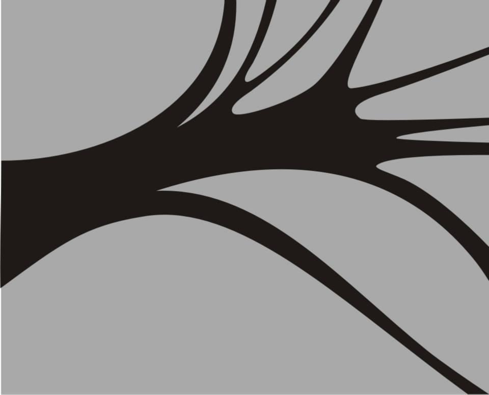 rizoma-apoena-cinza