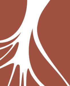 rizoma-apoena-marron